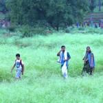 Bhoomipooja at Anadavana