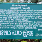 Yatra to reserve forest near savandurga